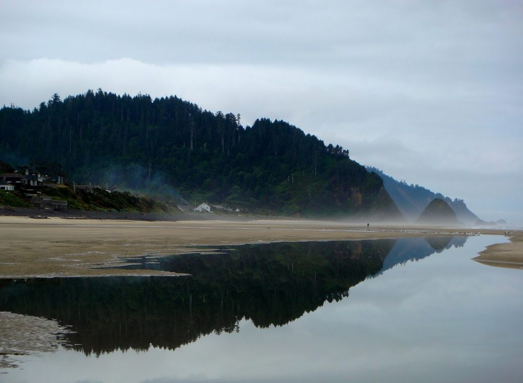 Beach Reflection5 - Arch Cape0001